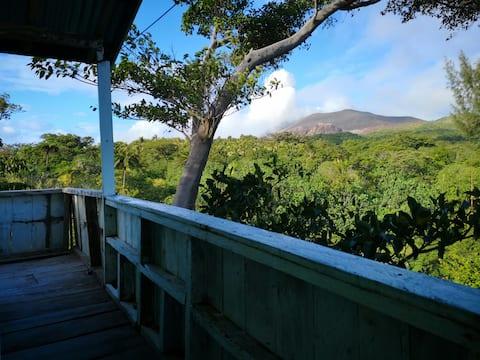 Jungle Oasis Bungalow