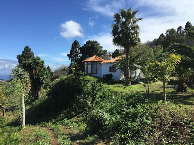 Den Ozean zu Füßen ... - Santa Cruz de la Palma - House
