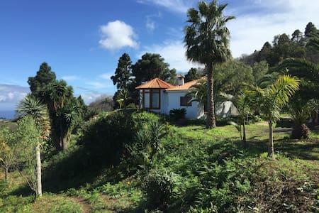 Den Ozean zu Füßen ... - Santa Cruz de la Palma