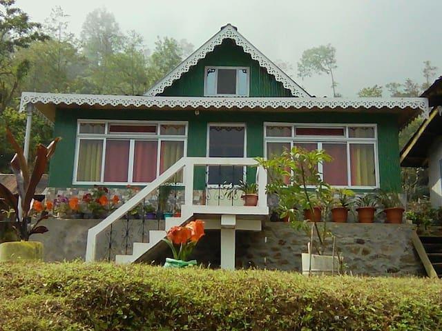 Brightside farm stay( lamahatta Darjeeling)