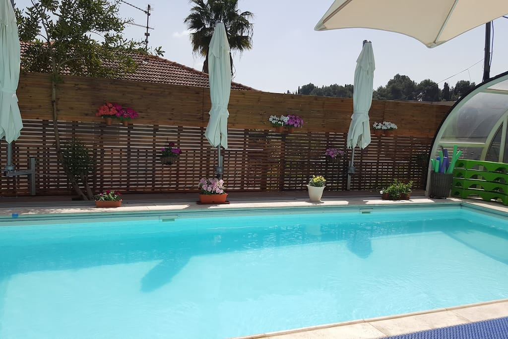 pool at day time- roof open