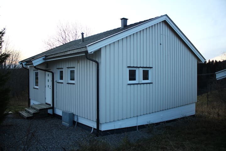 Koselig og nyoppusset hybel leilighet