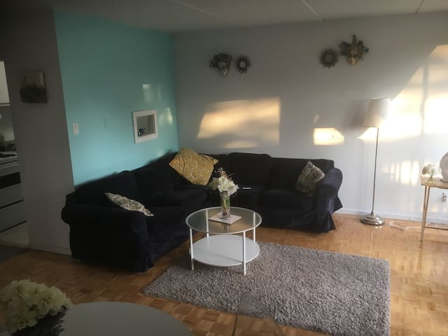 Charming appt minutes away from Metro & Downtown