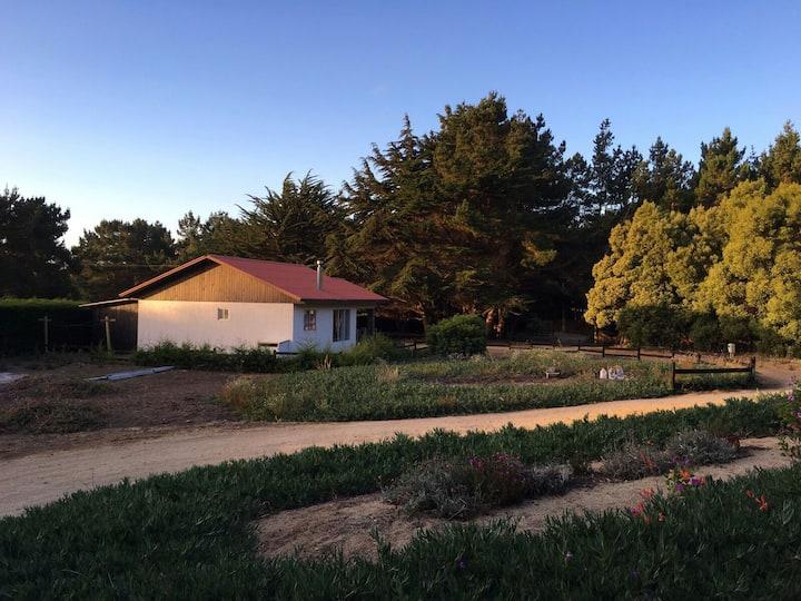 """Cabañas Punta de Lobos """" Casas Hellenkamp"""""""