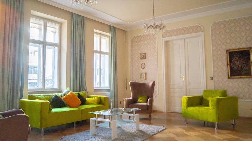 Shared Classic Apartment in the Heart of Vienna 3