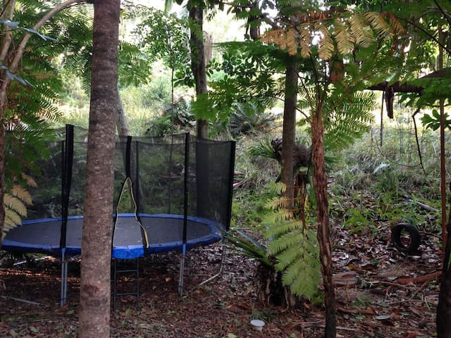 A huge Trampoline and Tyre swing for the kids in the back yard