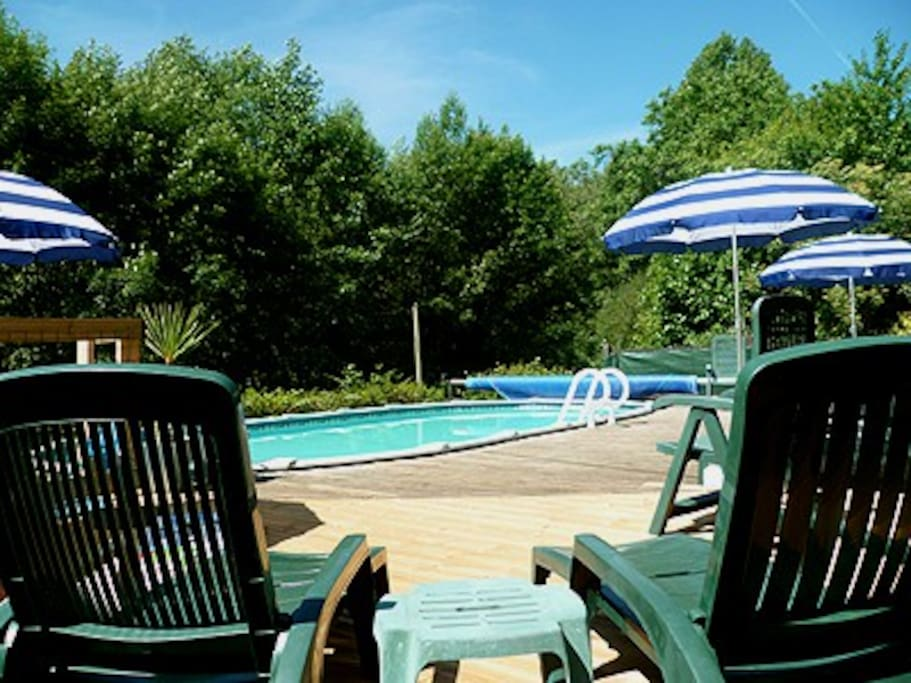 Poolside - a glorious suntrap