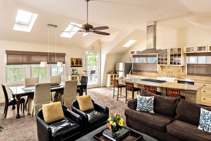Large, bright  2 BR/2 BA luxury apt center of town