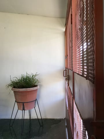 Lizzette's Apartment