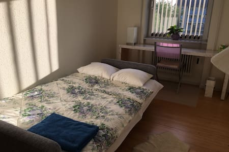 Nice and clean room - Aalborg