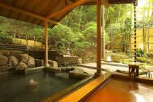 It's hot spring in Arima!  It takes 42min by train!