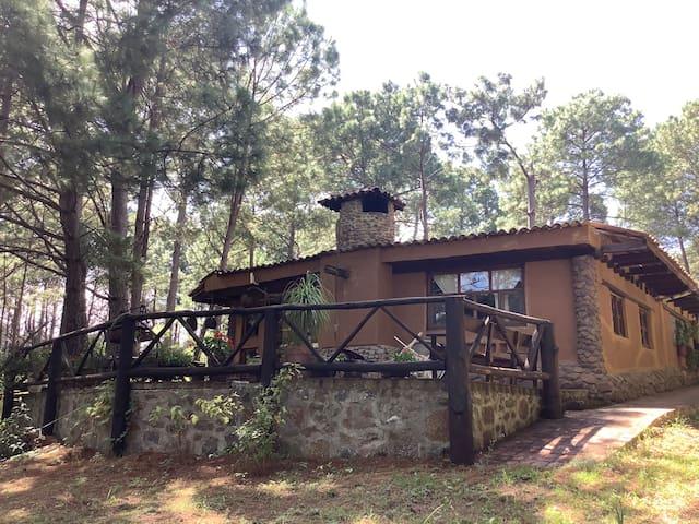 Cabaña Estilo Rústico en el Bosque