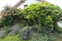 terrace I