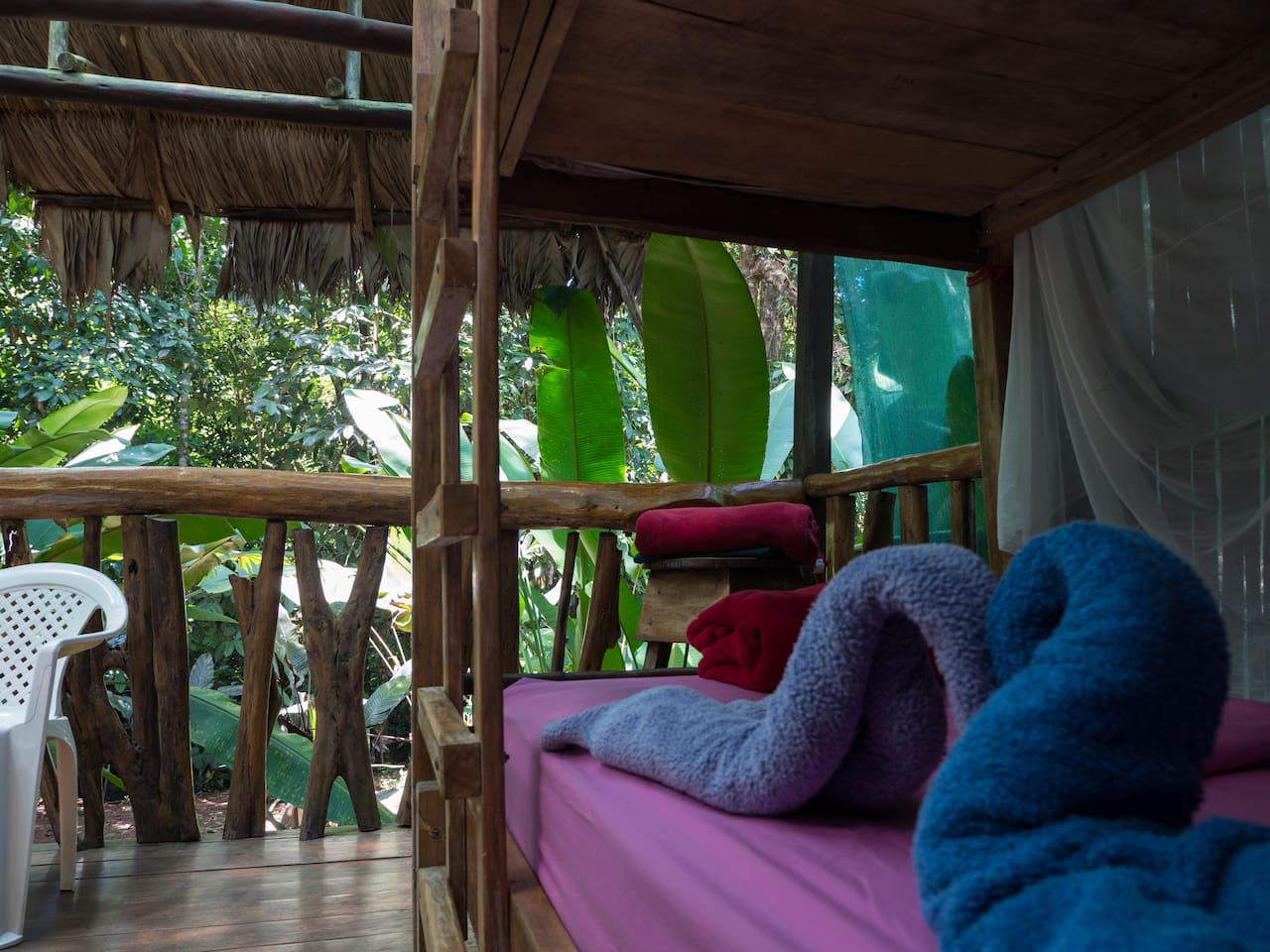 Pejibaye - View to the jungle  Our new Pejibaye has now a double-bunk-bed, up to 4 people