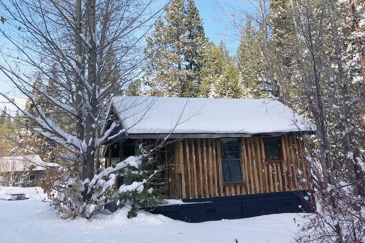 COLDSTREAM PERCH - MODERN CABIN AT CANYON RANCH