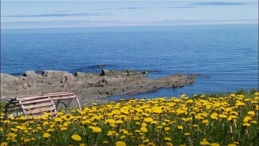 #1-Chambre avec vue sur mer