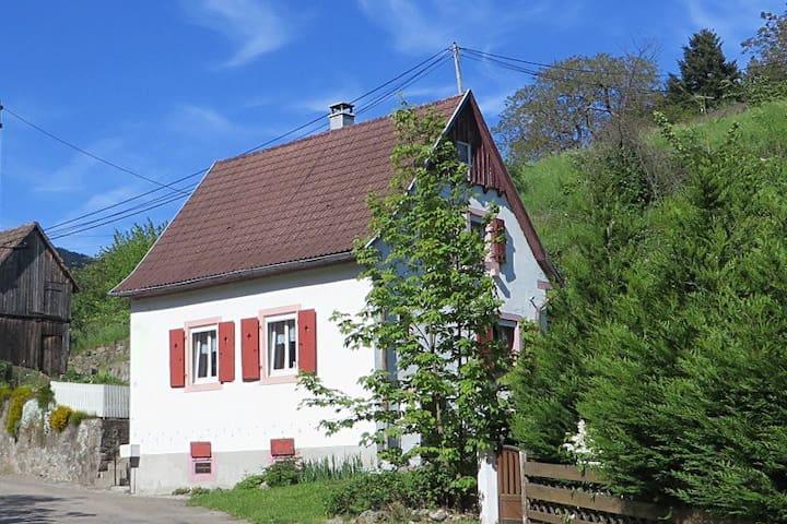 Ferienhaus Petit Papillon am Rande der Vogesen - Soultzeren - Hus