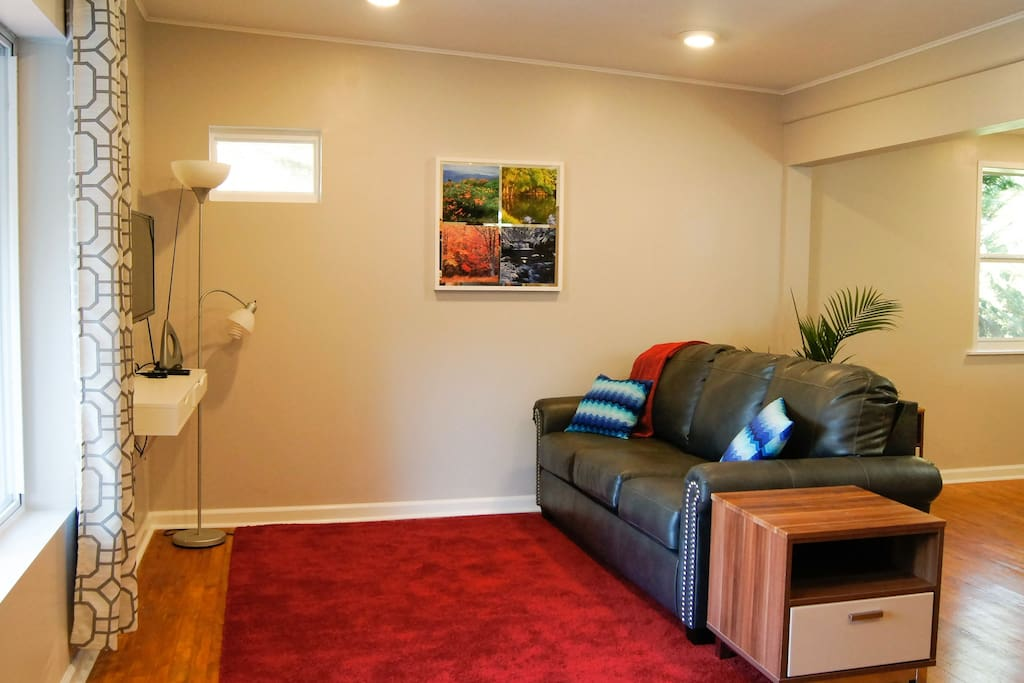 Living Room with fold-out couch