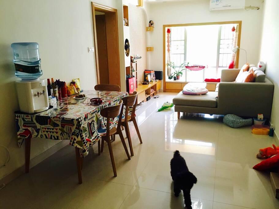客厅的marpaw