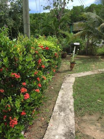 Belize City Home w/ FREE airport pickup & drop-off