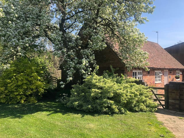 View of Dairy Cottage from farm gardens