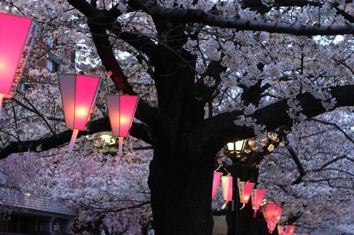 My House Tokyo : Tsukiji Ginza - Chuo-ku - Leilighet