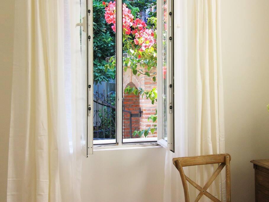 窗外就是花园和长廊