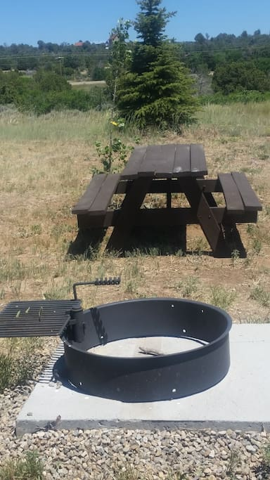 Fire pit, picnic table, tree