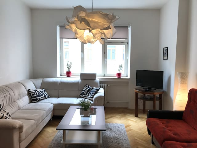 Comfortable apartment in the heart of the city