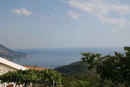 Luxury villa/private pool/sea view - Budva