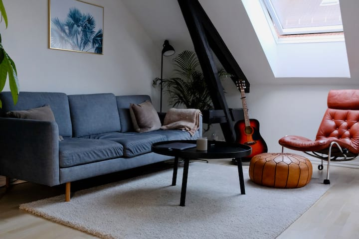 Central & modern scandinavian loft apartment