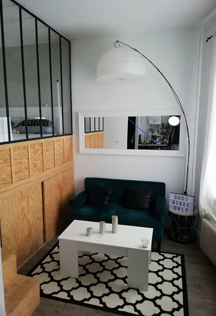 Appartement 23M²- Metro 9 - Croix de Chavaux