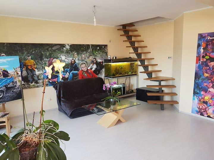 UNTOLD Loft budget rent Floresti 160€