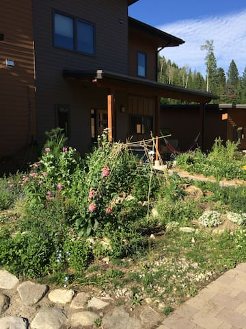 Cohousing Condo for rent - Nelson - Dom