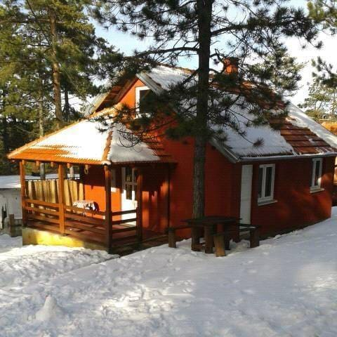 Beautyfull House for Rent - Divčibare - Villa