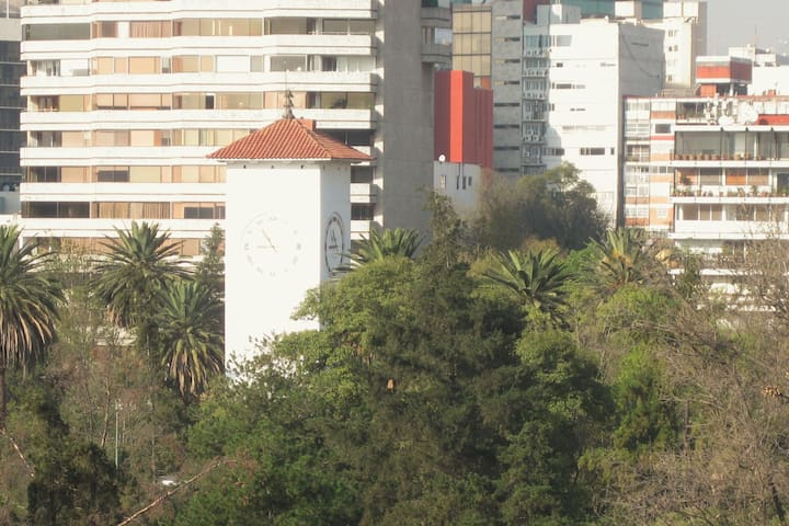Polanco with a view of the clock tower