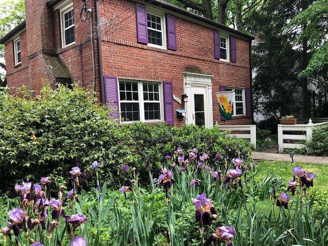 Gardenview Studio w Parking -  near Sligo Creek