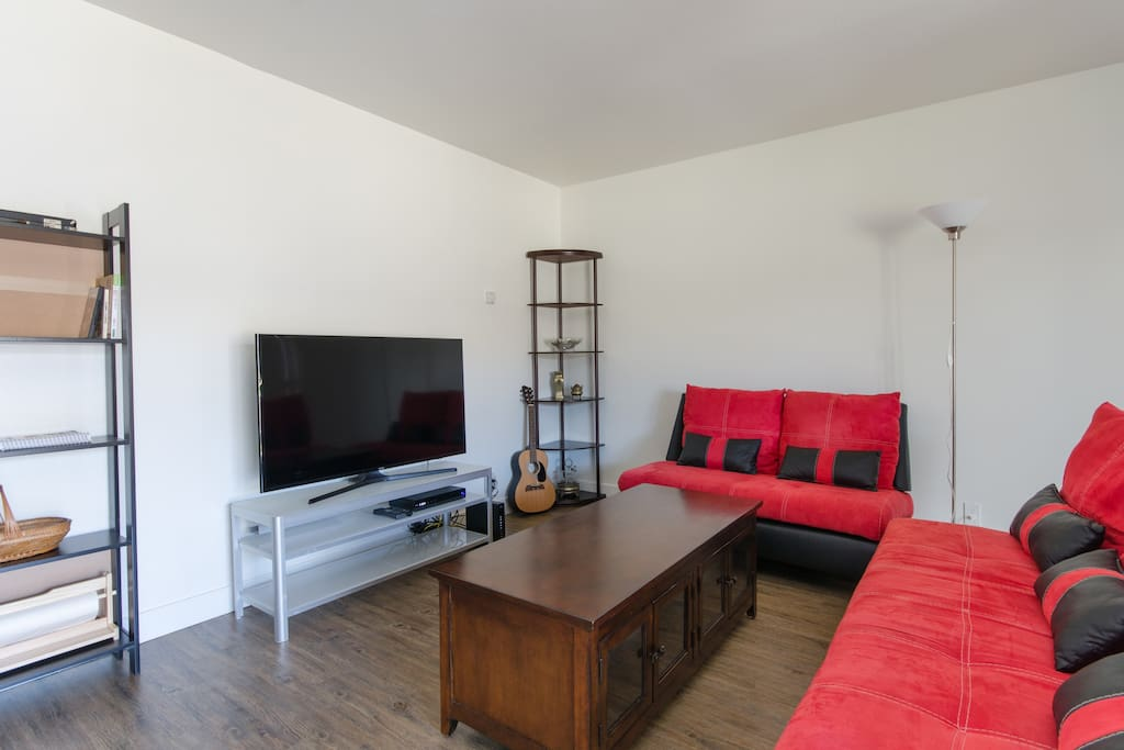 """Living room with 48"""" TV"""
