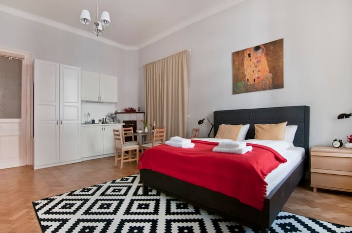 Charming Room next to City Center (7 min by feet)