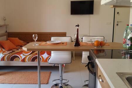Studio apartment Rebi