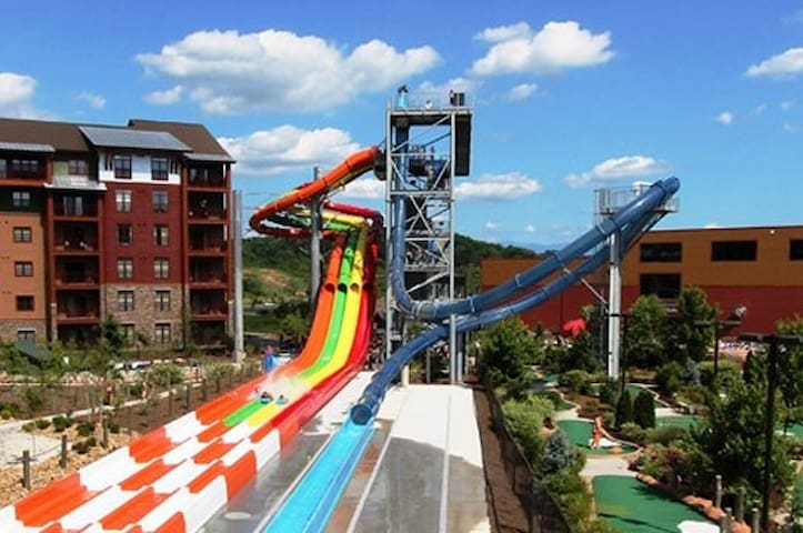 Week of July 4th. Water Park for 4 INCLUDED!