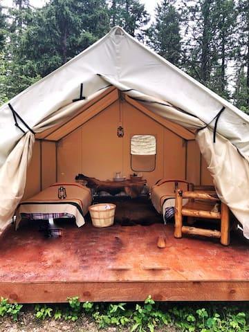 Mountain man wall tent