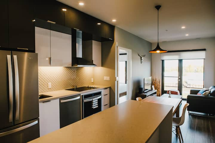 Corporate Stays | LXTX | Beautiful and modern  1BR