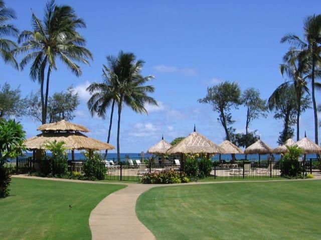 Tropical Paradise Found! Ocean Views 120