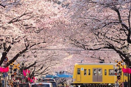 新宿附近超人气住宅#交通便利 - 中野区 - Daire