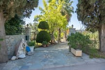 The entrance is flanked with beautiful cypress trees