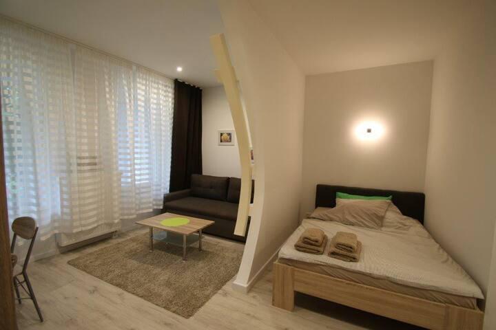 Tolles 1-Zimmer-Apartment in der Altstadt