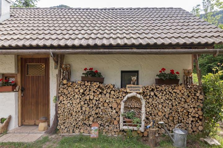 Bohinj house Lizina hiška 🍀