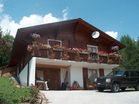 Chalet le Domino