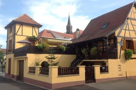 Coquet gîte  alsacien ,Tour sur la  route des vins - Wintzenheim